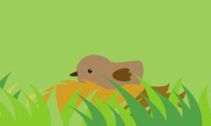 Cartoon bird on a nest