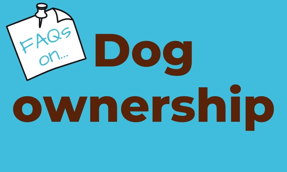 Click here for answers to questions about dog ownership