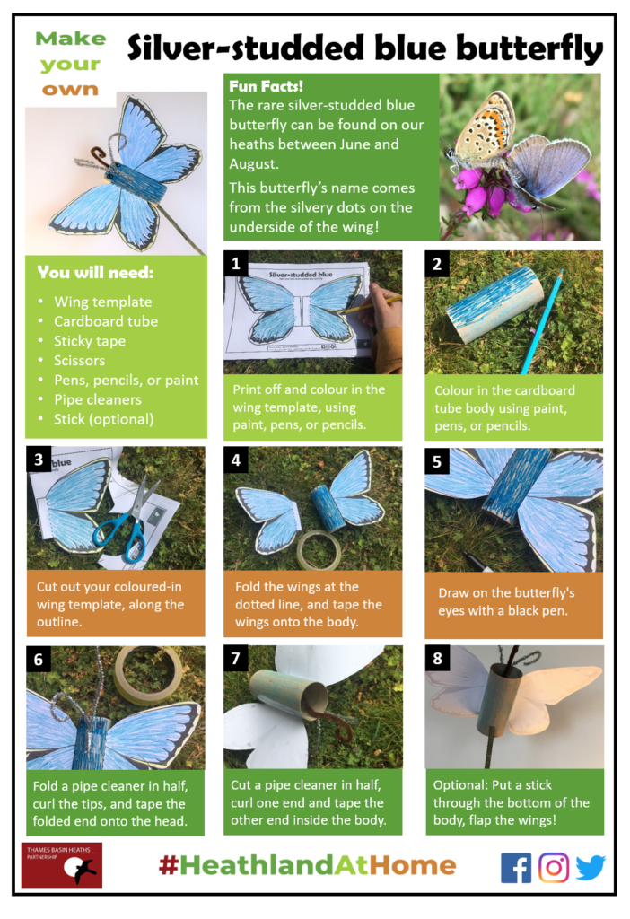 Click to download the butterfly craft sheet