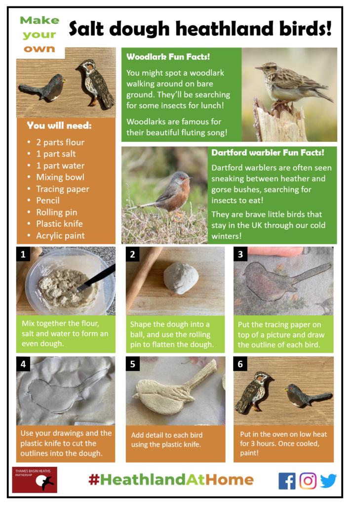Click to download the salt dough birds activity sheet