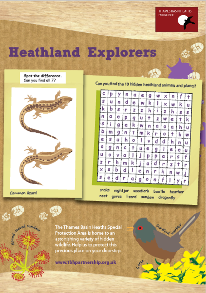 Click to download the heathland explorers activity sheet