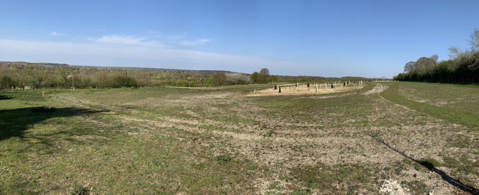 Photograph of greenspace at Runfold Ridge, showing green meadows