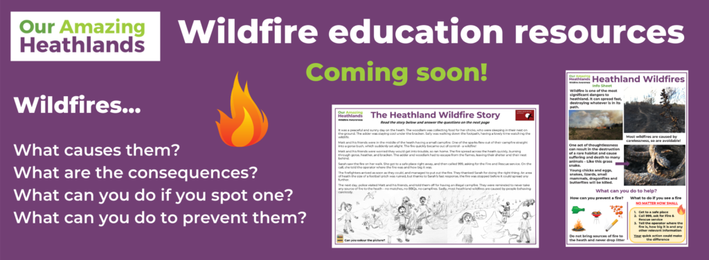 Wildfire education resources coming soon