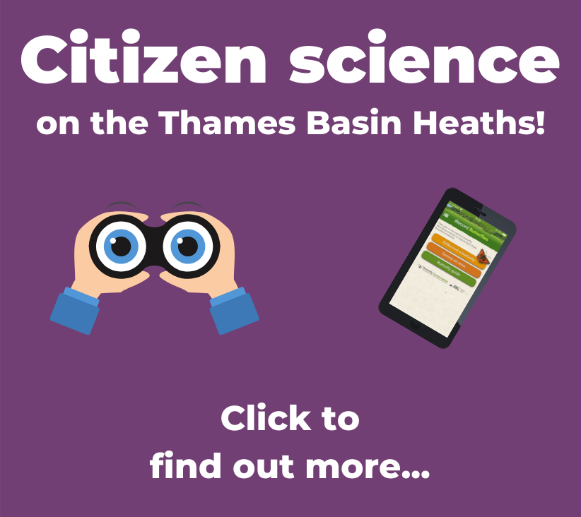 A button to click to find out more about citizen science