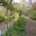 Path beside the Hoe Stream