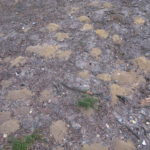Photograph of the sandy ground at the sand pit, showing small mounds of soil.
