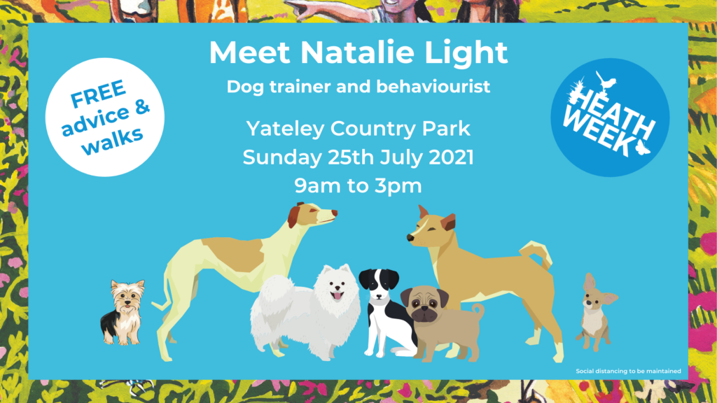 Heath Week event poster showing an assortment of dogs