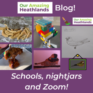 A link to an education blog post