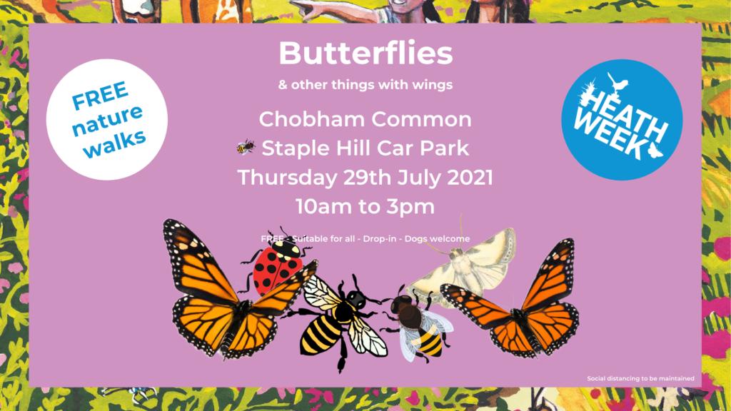 Heath Week event poster showing butterflies, bees, a moth etc