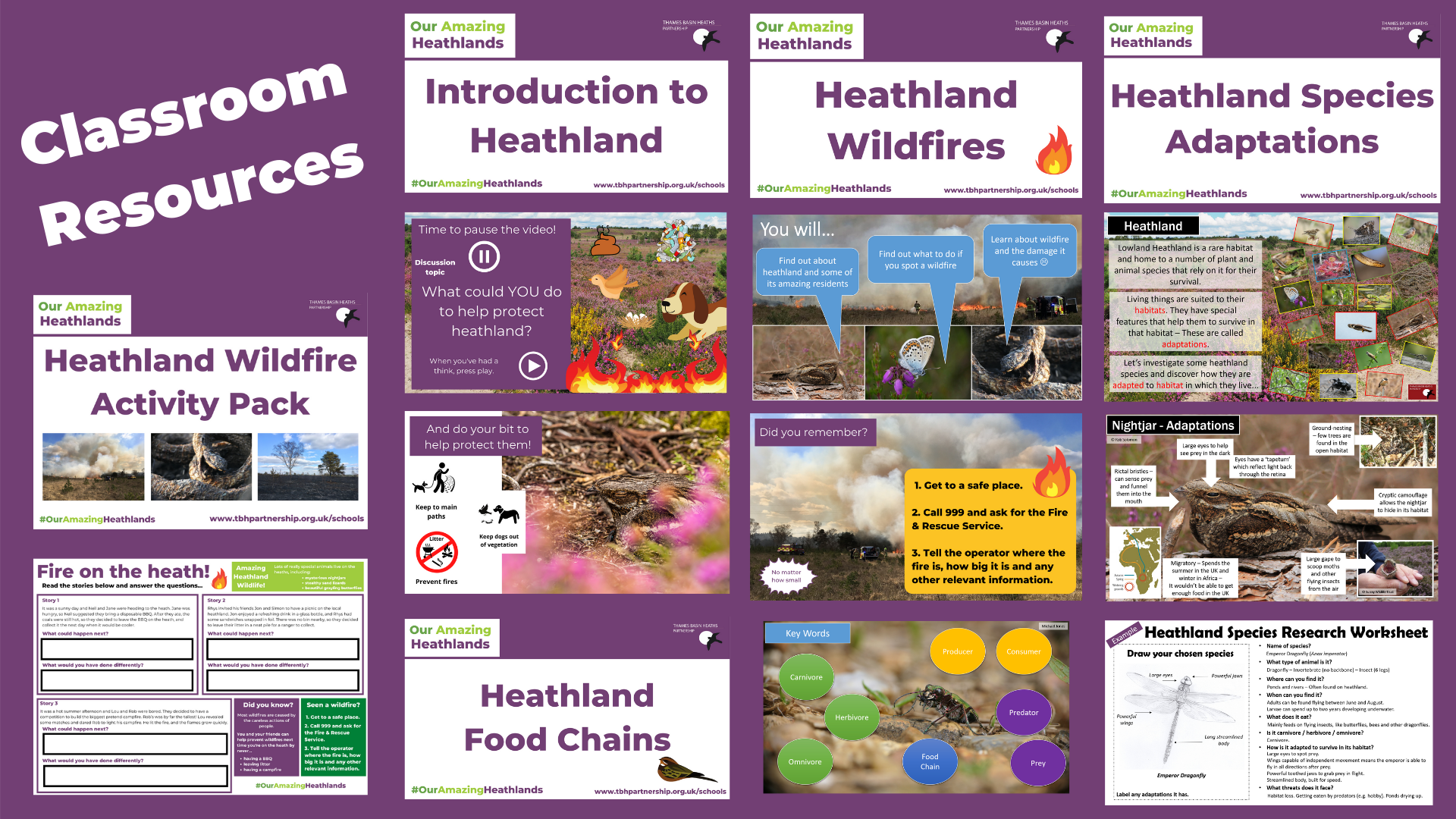 A montage highlighting heathland classroom resources