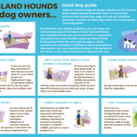 'Good dog guide' graphics. Please go to 'Good dog guide' on the main menu for an accessible version.