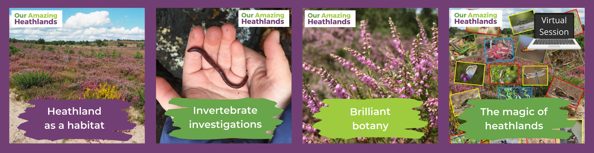 A pictoral overview of heathland sessions available