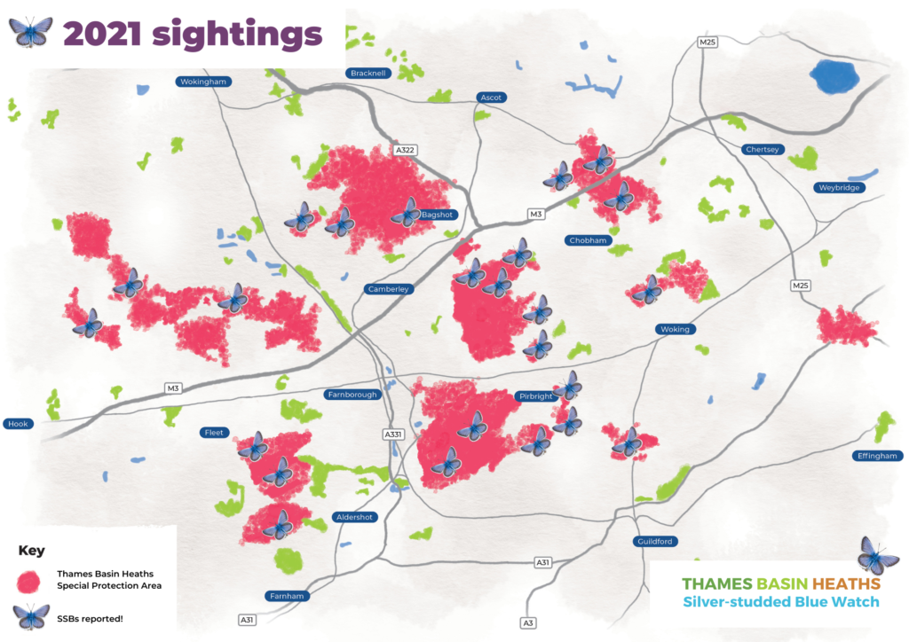 A map highlighting where silver-studded blues have been spotted