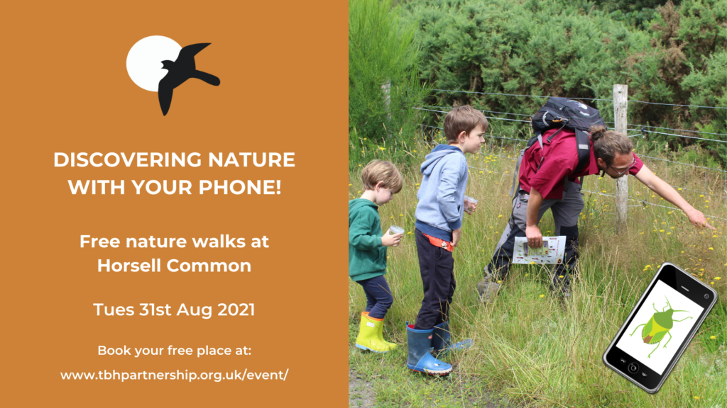 Event poster for with a photo of Warden Andi pointing out butterflies to two children