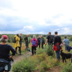 Group gathered on a hill at Chobham Common.