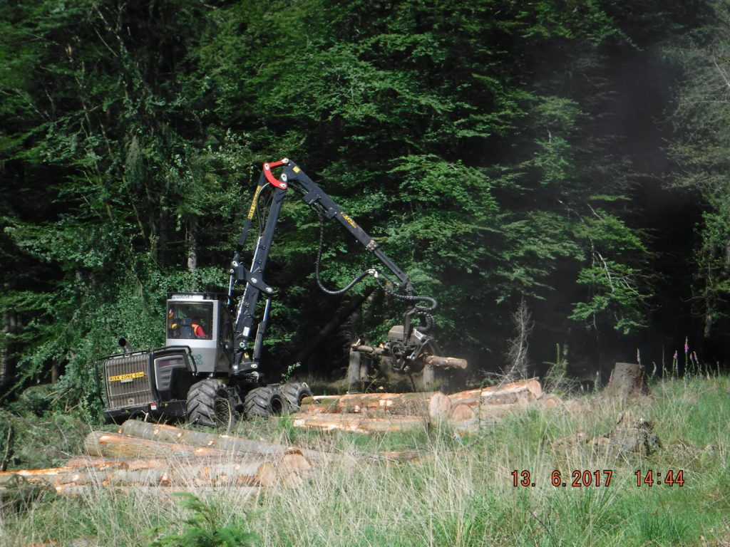 Forest harvesting machinery at work June 2017