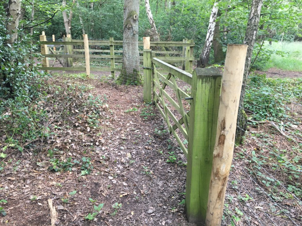 Photograph of stock fence at Horsell Birch
